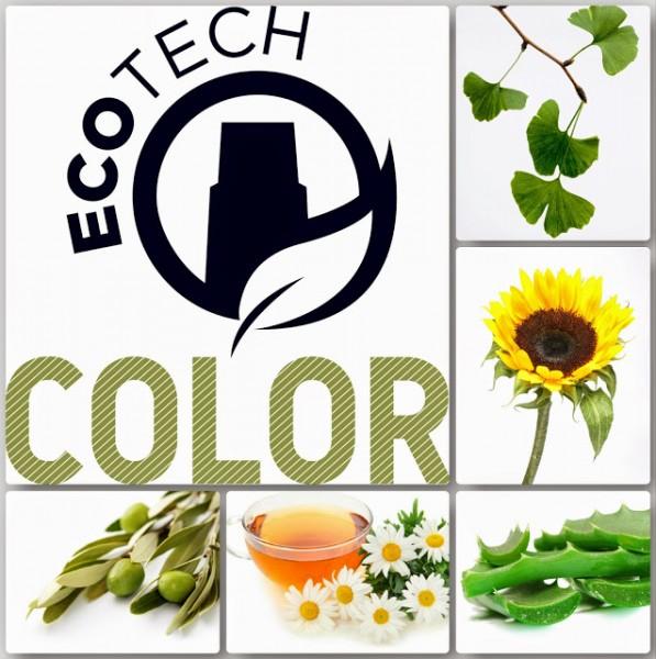 Ecotech-kolosseum